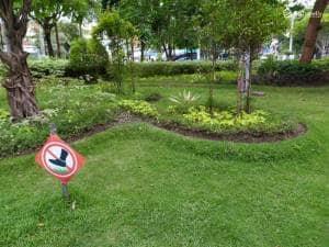 Menikmati Pagi di Taman Kebon Rojo Jombang
