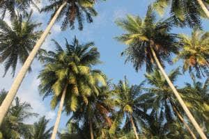 Pesona Nirwana, Pantai Indah di Kota Padang yang Jarang Terjamah