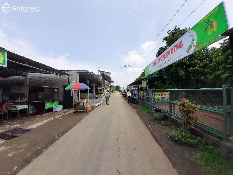 Berburu Belimbing Segar Di Agrowisata Belimbing Desa Moyoketen Tulungagung Gotravelly