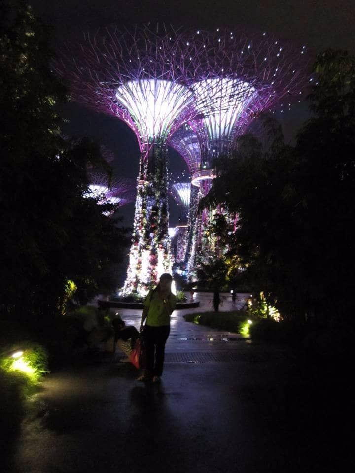 gardens bye the bay