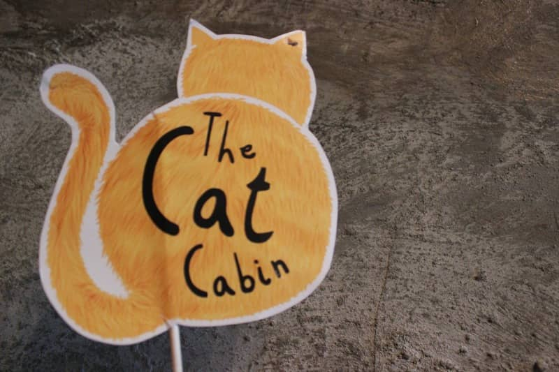the cat cabin
