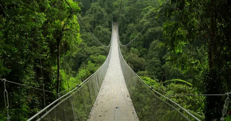 situ gunung suspension bridge