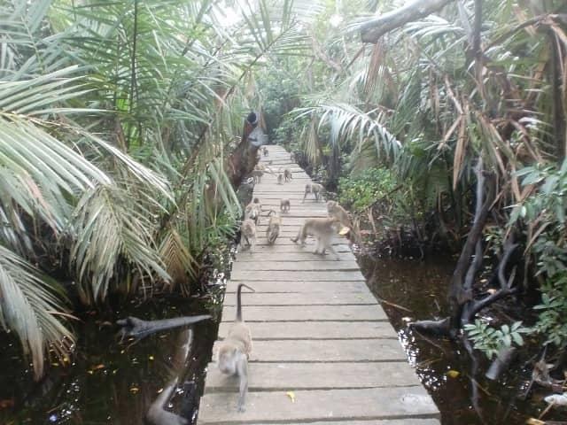 tempat wisata di Banjarmasin