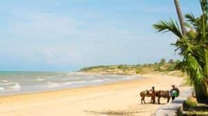 pantai pasir putih di madura