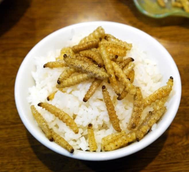 Bukan China 7 Kuliner Extreme Dan Aneh Ini Ternyata Asli