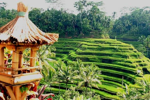 Diberkahi Keindahan Alam Dibalut Kreatifitas Penduduk Dalam Mengolahnya Berikut 10 Desa Wisata Terbaik Di Indonesia Desa Wisata Terbaik Di Indonesia