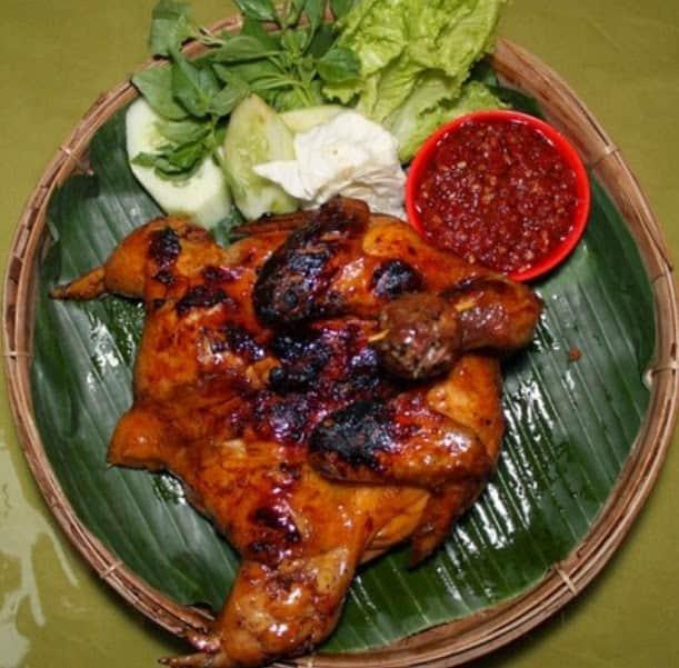 78+ Gambar Ayam Ingkung Lucu Terbaik