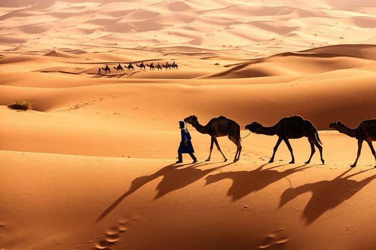 padang pasir terindah di dunia