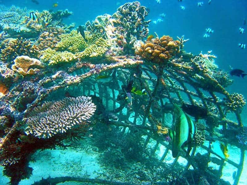 snorkeling terindah di bali