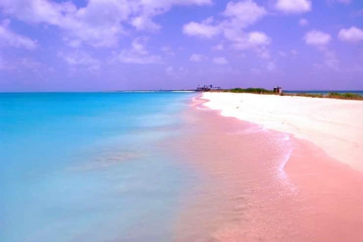 pantai pink terindah di dunia