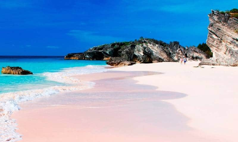 pink beach in the world