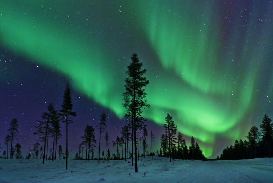 aurora barelis