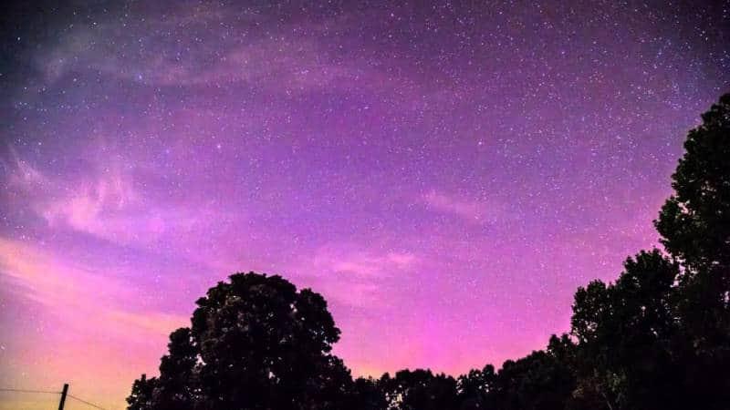 aurora bareilis georgia