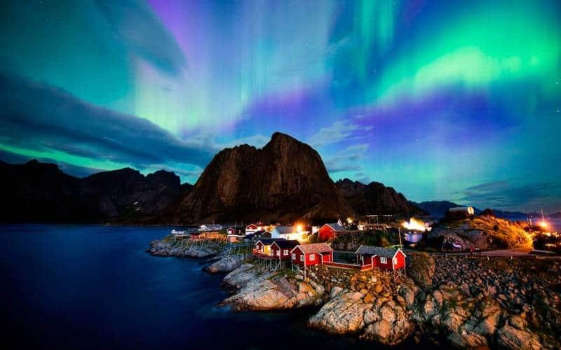 norwegia aurora bareilis