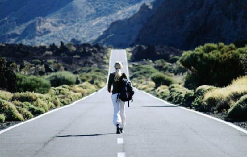 tipe traveler