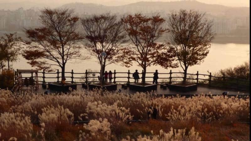 destrinasti menarik di korea selatan saat musim gugur