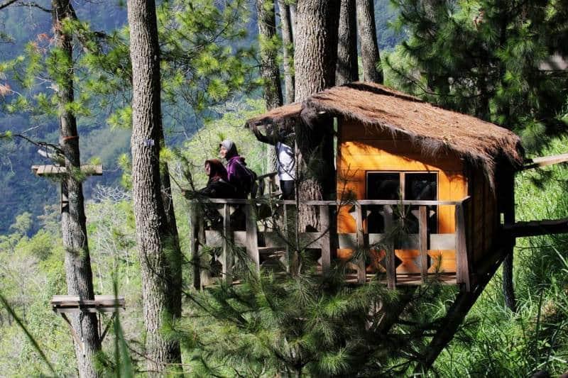penginapan rumah kayu