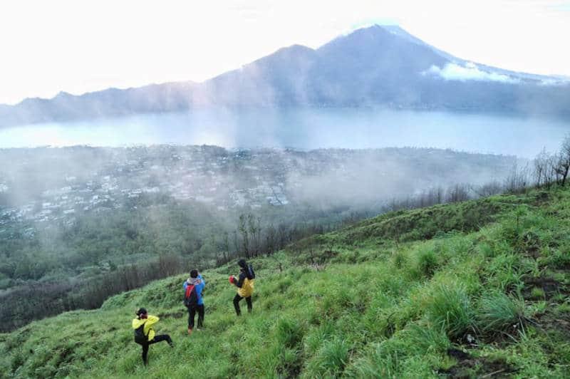 wisata hutan di Bali