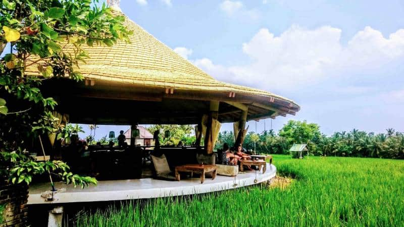10 Cafe Bernuansa Alam Di Bali Dengan Pemandangan Spektakuler