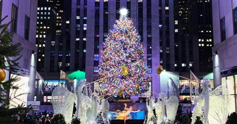 opsi perdagangan pohon natal