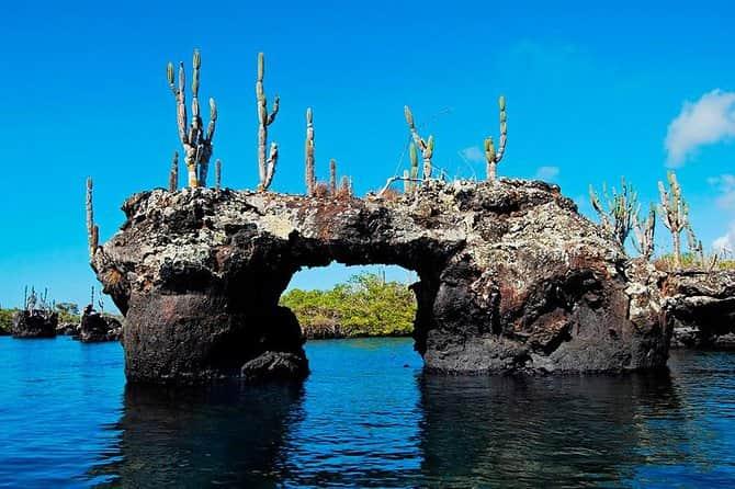 wisata menarik di galapagos