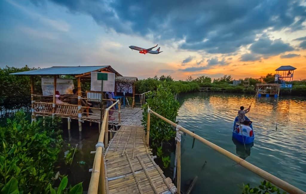 hutan mangrove terindah di indonesia