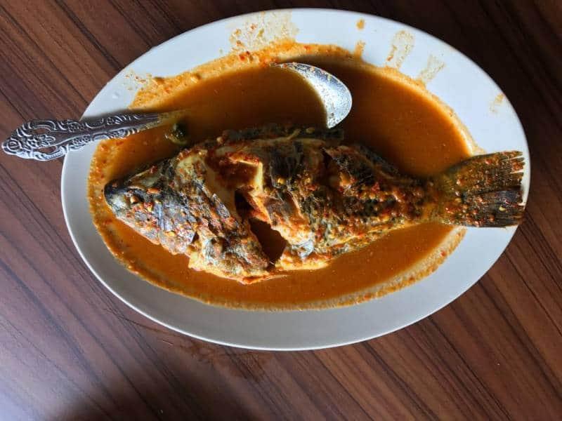makanan khas Gayo