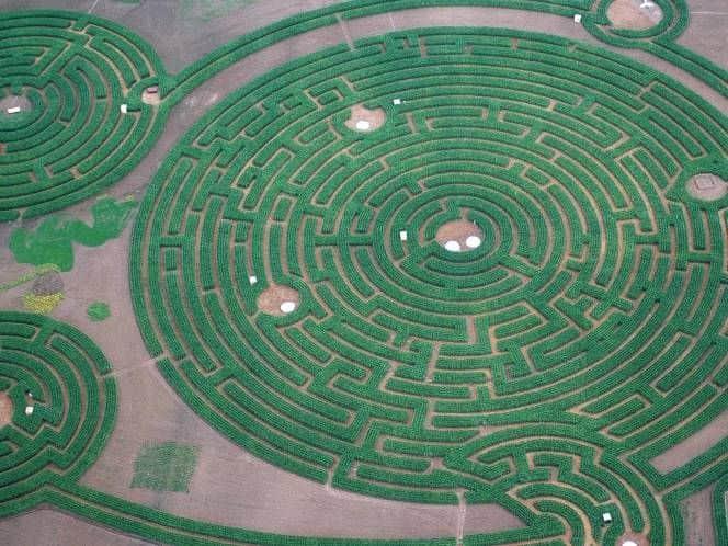 labirin paling besar di dunia
