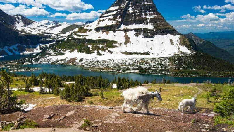 taman nasional terkeren di Amerika