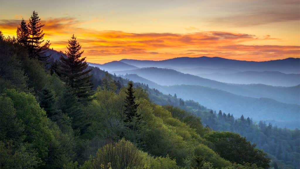 taman nasional pegunungan great smoky