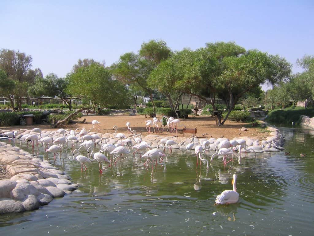 destinasi Wisata di Bahrain