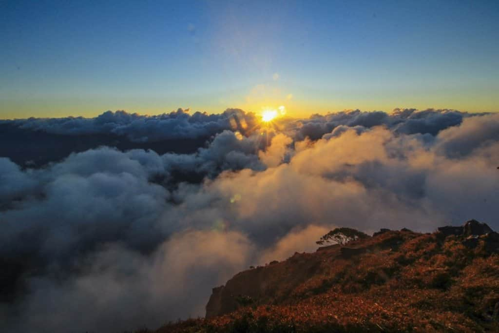 puncak Tertinggi di Sulawesi
