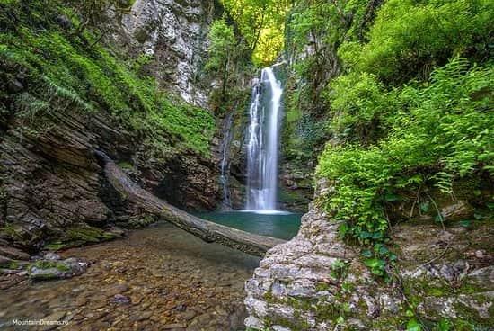 taman nasional sochi