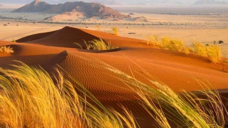 7 Gurun di Afrika Berkontur Unik Sajikan Pemandangan Epik