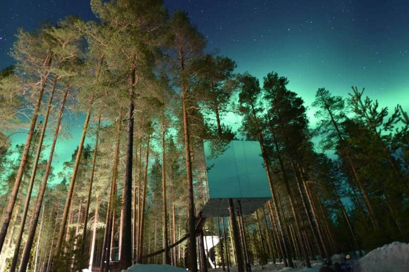 treehotel swedia