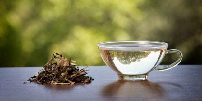 teh putih fujian