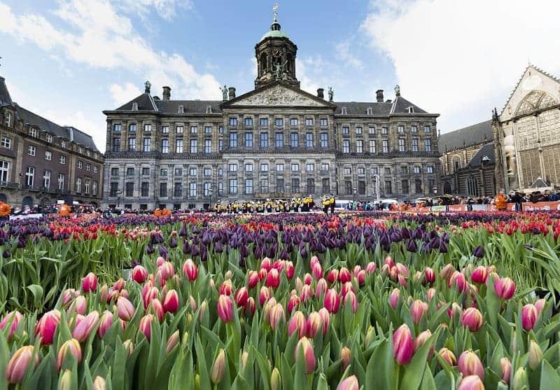 Jalan jalan Ke Belanda? Nih 10 Wisata di Amsterdam
