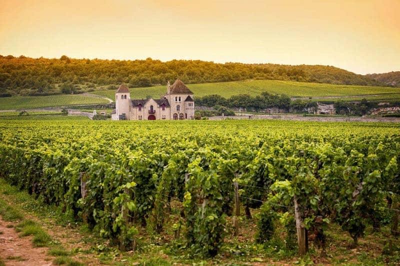 Burgundy Perancis