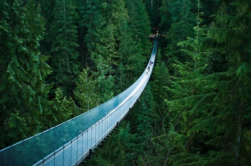 Jembatan gantung tertinggi di dunia