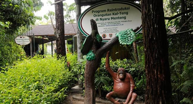Wisata Palangkaraya
