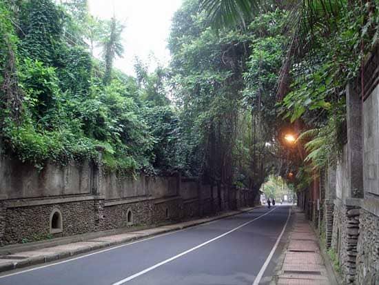 Jalan Raya Campuhan Bali
