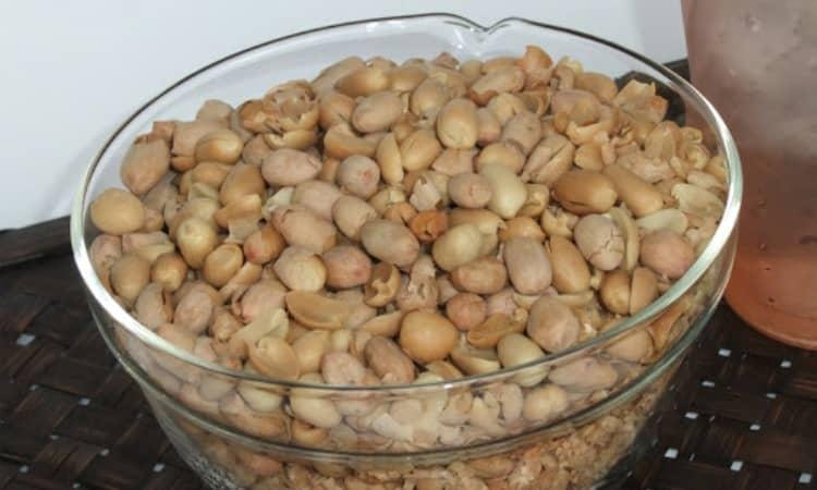 Kacang Listrik