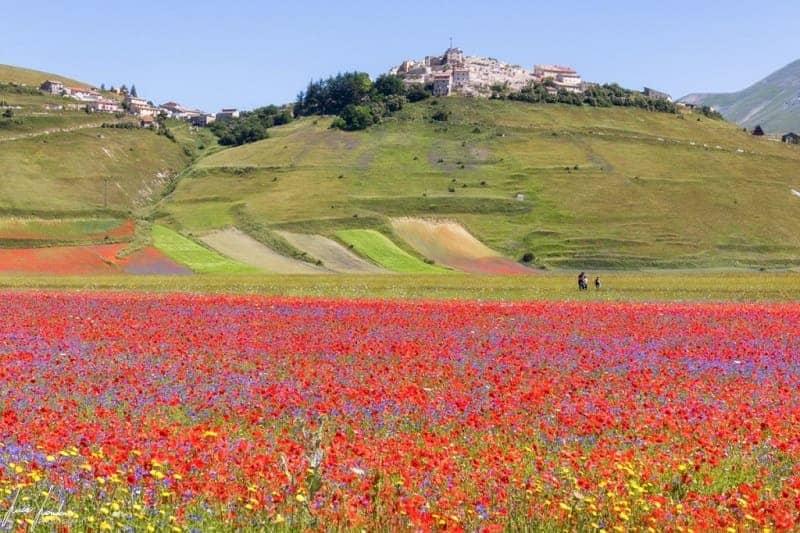 Castelluccio  Wisata Alam di Italia