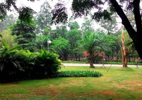 Taman Tebet