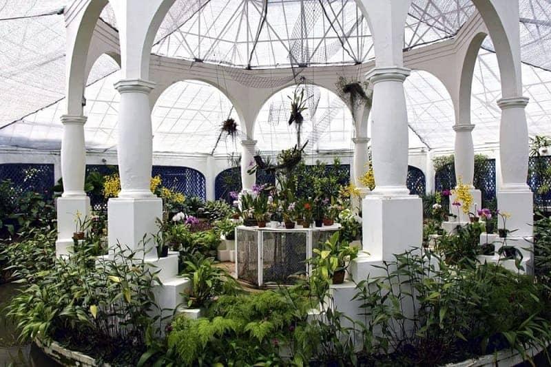 Jardim Botanico Brazil