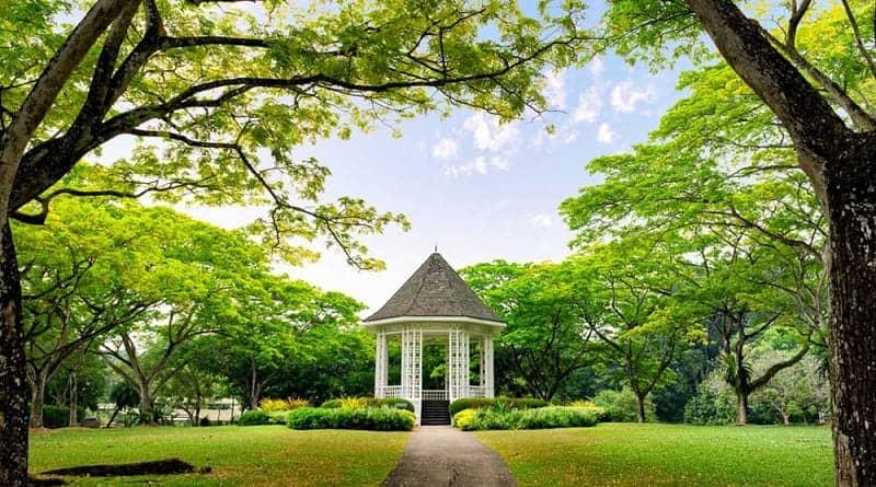 Panorama 10 Kebun Raya Terbaik di Dunia Segarkan Hati