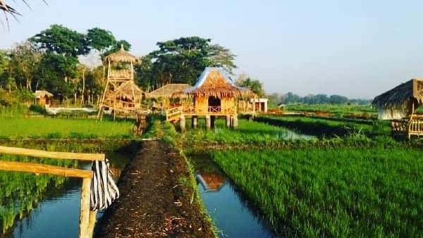 Desa Pulutan